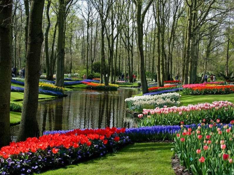 Les jardins de tulipes de Keukenhof